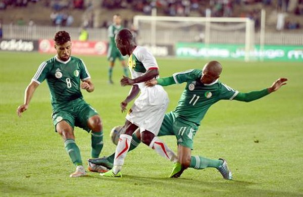 Algérie en vert 2