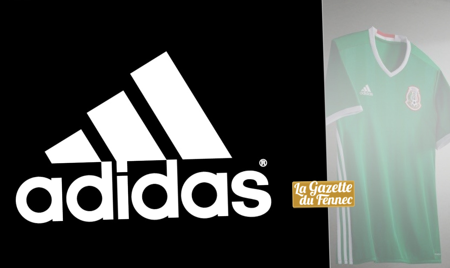 maillot algerie noir adidas jusqu à 60% www.citroen-barre.com ! 8efb367dd51