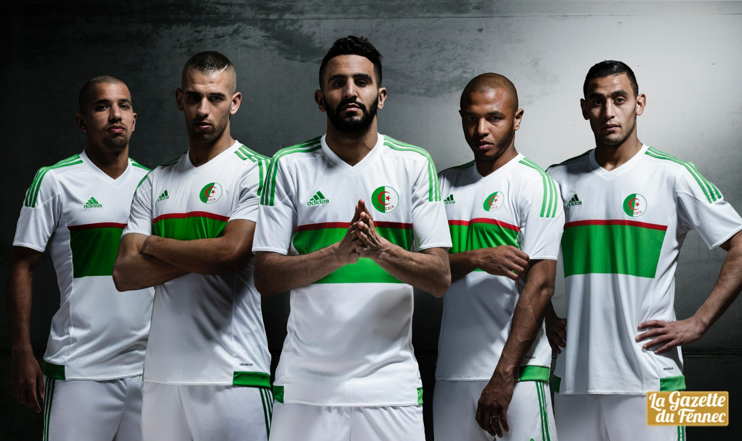 Conception innovante 3c4cf 17a2c La nouvelle collection des Fennecs enfin dévoilée par Adidas !