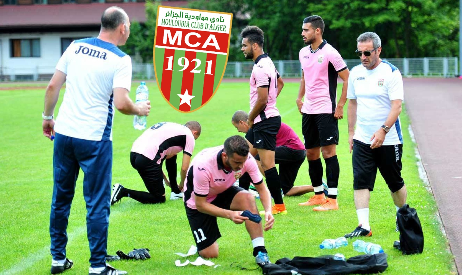 mca stage pologne scandale
