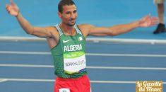 Makhloufi : «J'ai gravé mon nom dans l'histoire du sport algérien»