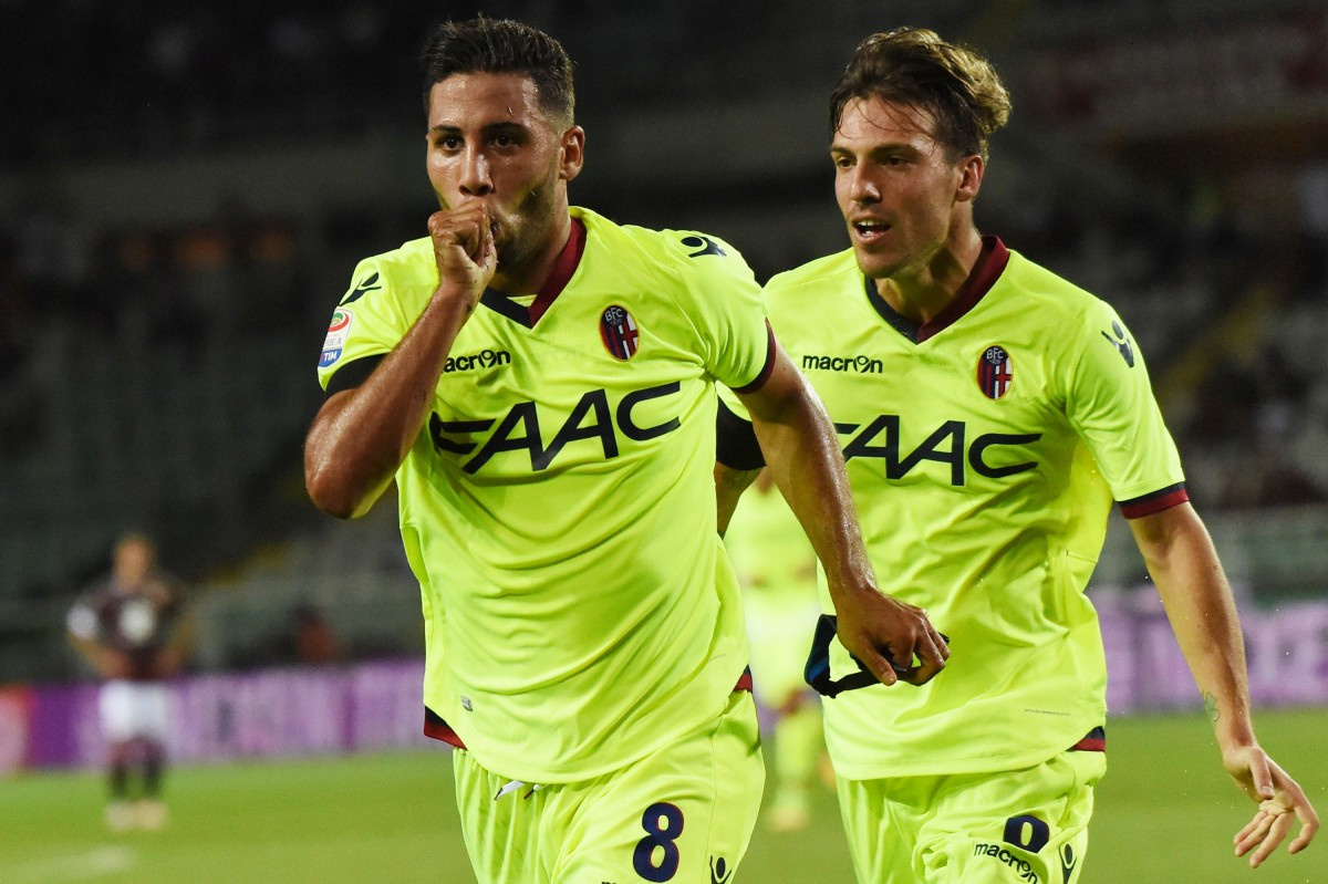 taider buteur papa Bologne