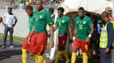 Le Cameroun sans M'Bia mais avec N'Jie et des Lions motivés !