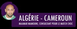 mamouni-consultant-lgdf