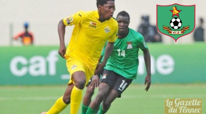 Amical : le Zimbabwe bat la Zambie (1-0)