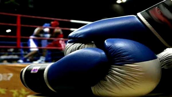 boxe championnats arabes juniors