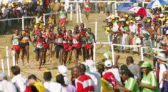 Championnats du monde 2017 de cross-country: l'Algérie 15e (messieurs) et 13e (dames)