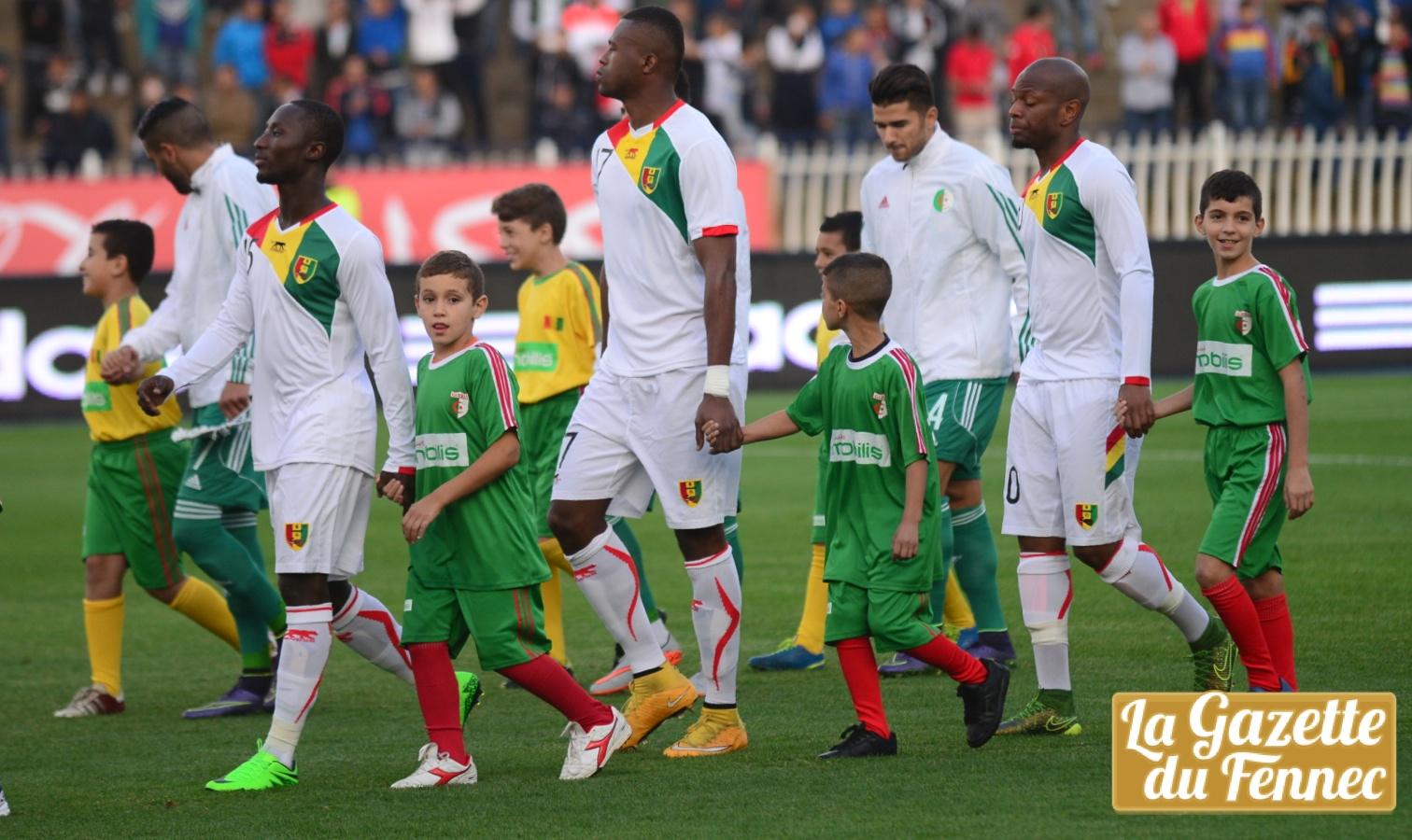 algerie guinee amical