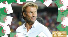 Hervé Renard, le regret de l'Algérie !
