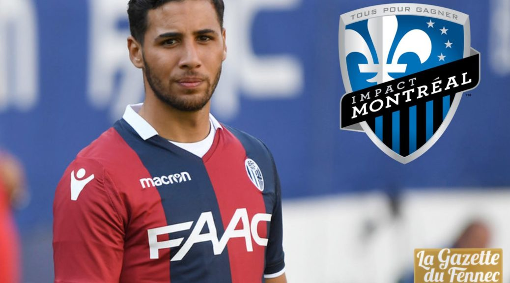 taider impact montreal