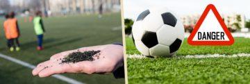 Enquête : le danger des pelouses synthétiques