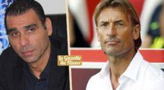 EN : Quand Zetchi dresse le portrait de… Hervé Renard !