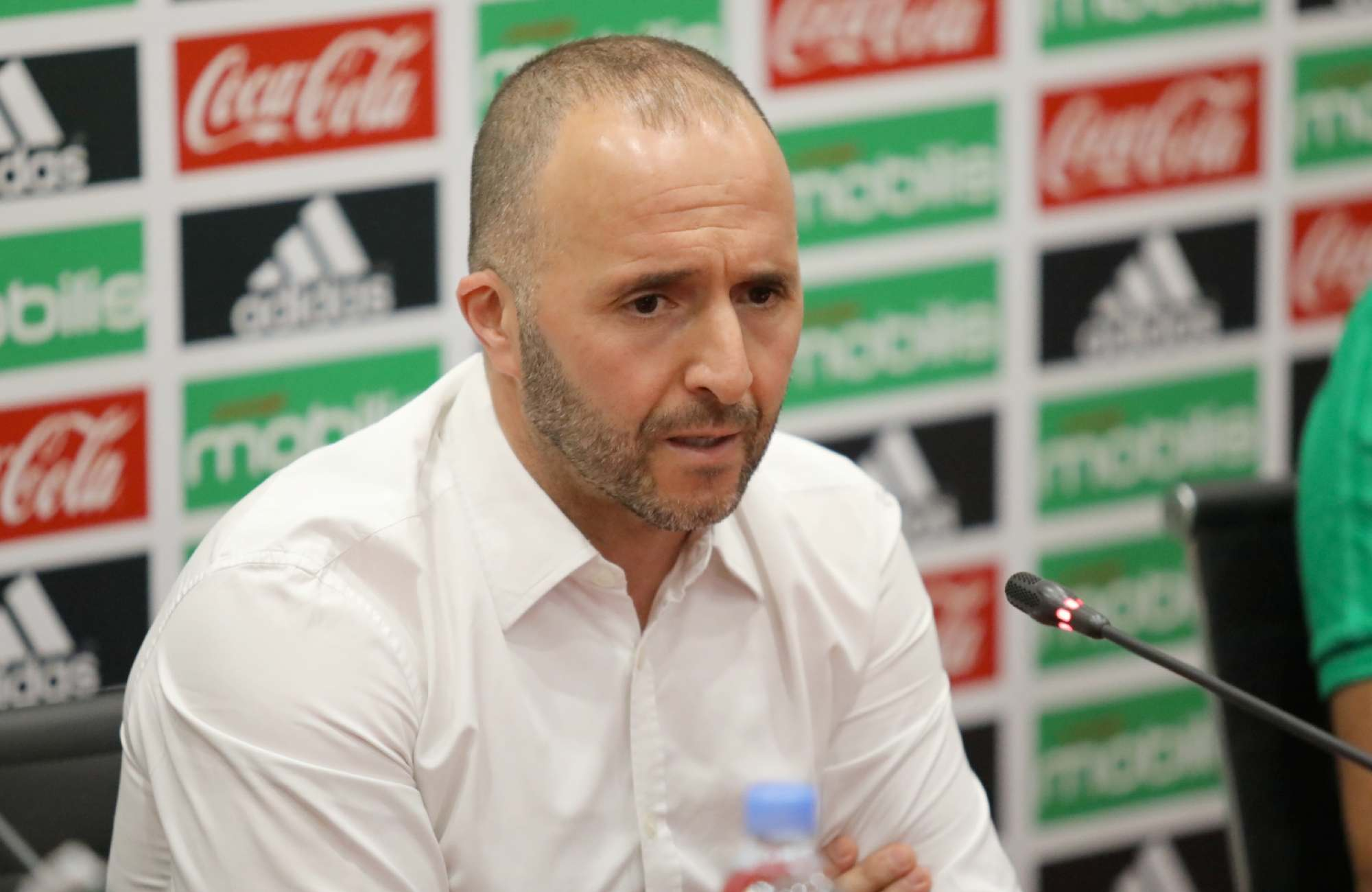 belmadi conference aout