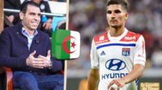 """Zetchi : «Aouar est très lié à l'Algérie et à l'Équipe nationale"""""""