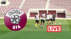 Qatar-Algérie : Suivez le match amical en direct