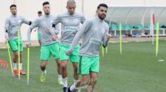 CAN 2019 : deux matchs amicaux pour les Verts avant la phase finale