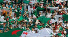 22e Vendredi: Hirak et coupe d'Afrique !