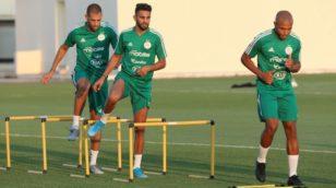 Les Champions d'Afrique se contenteront d'un seul match face au Bénin
