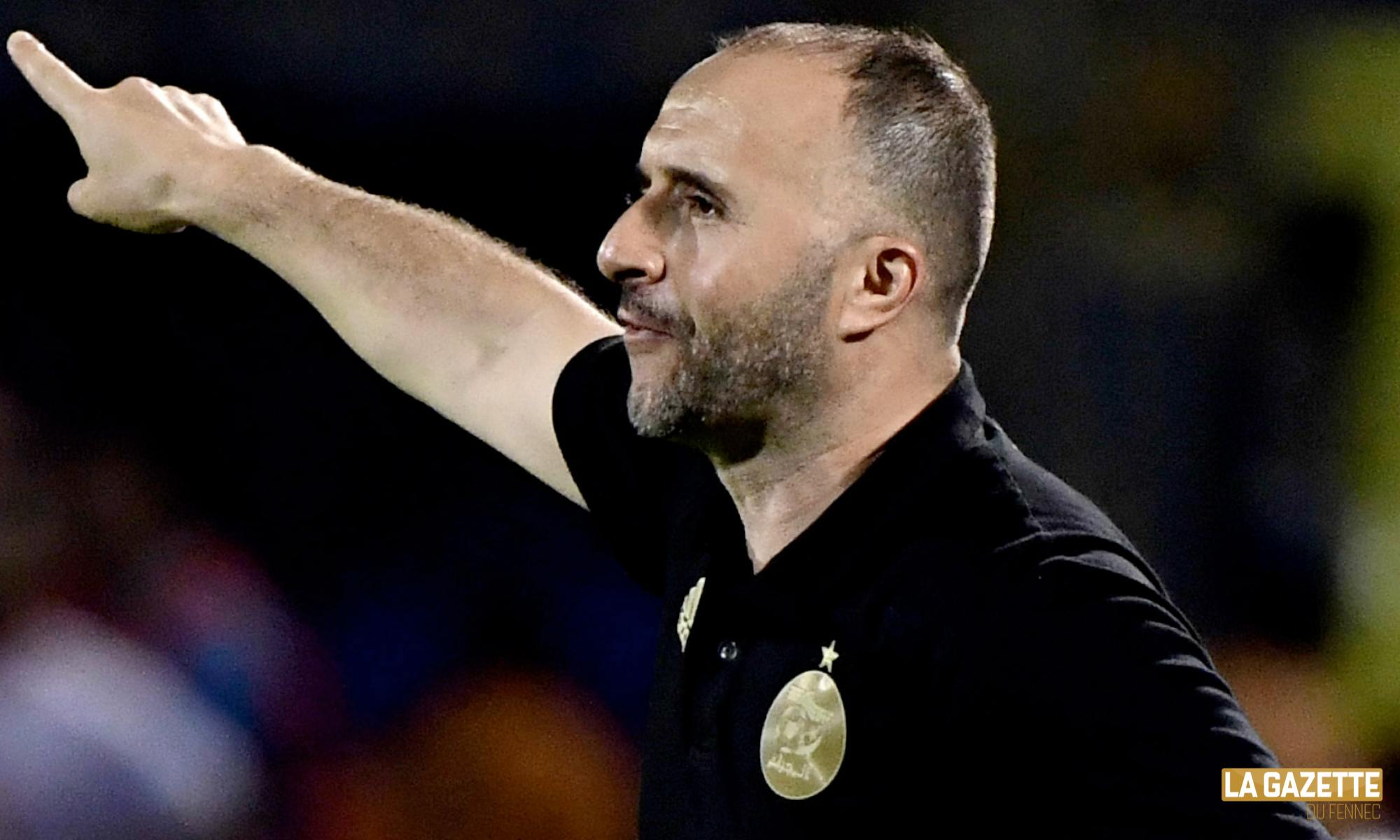 belmadi direction can 2019