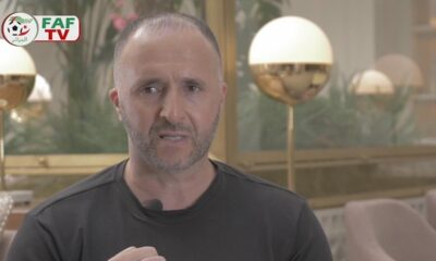 belmadi interview faf can