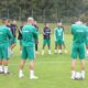 belmadi face groupe stage autriche