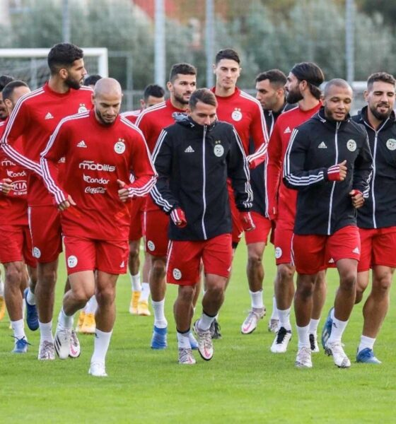 bennacer brahimi groupe entrainement stage rouge pays bas octobre