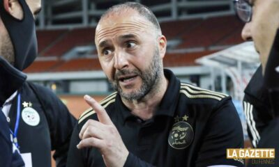 belmadi djamel menace