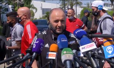 Djamel Belmadi journalistes