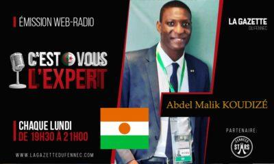 koudize niger expert